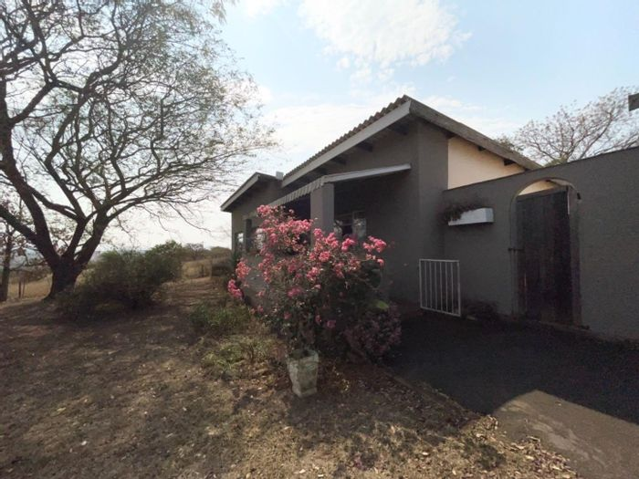 Property #1974128