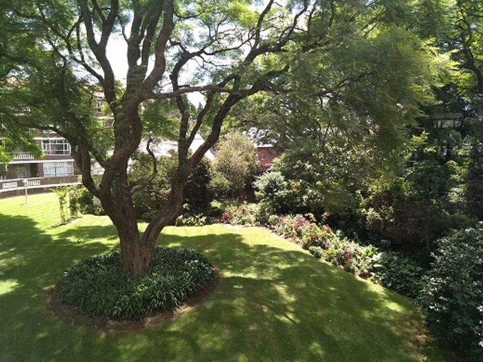 Property #1855216